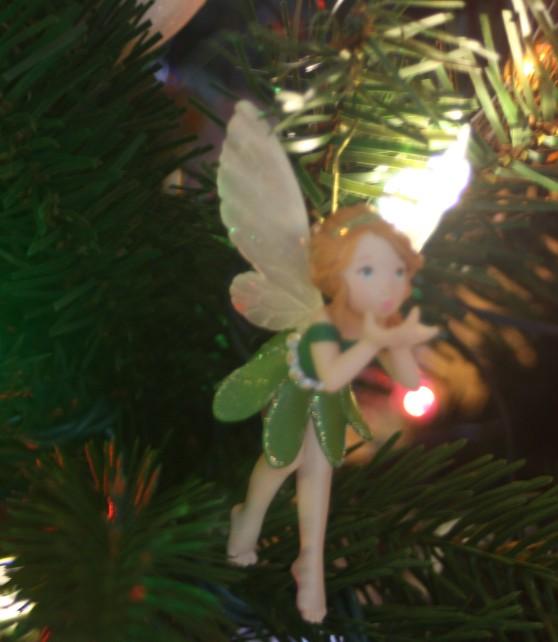 Christmas 2012 036