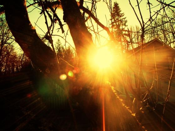 scalding sun